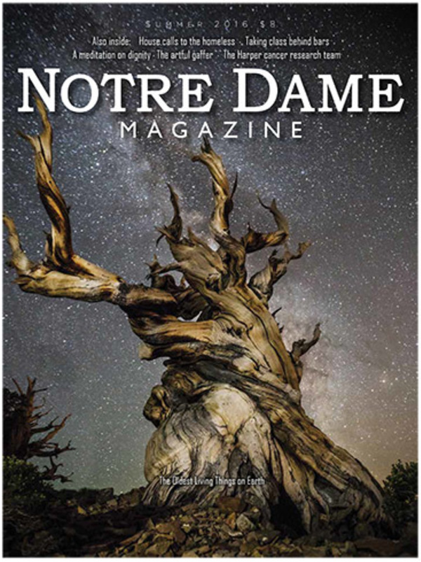 The Oldest Living Things on Earth cover
