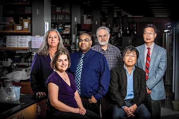 From left: Sharon Stack, Amanda Hummon, Reginald Hill, Steven Buechler, Hsueh-Chia Chang and Danny Chen bring diverse expertise to the common cause of fighting cancer. photo: Matt Cashore '94