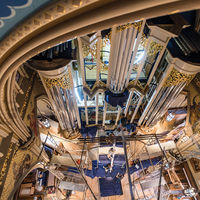 Like miniature figures in a god's-eye masterpiece of the northern Renaissance, workmen lift two of the taller pipes of the Murdy Family Organ into place in August. The 81-day installation ended weeks ahead of schedule on October 20.