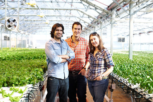Gotham Greens, led by Puri, Haley and Frymark, has installed rooftop farms on facilities in New York City, including a Whole Foods Market in Brooklyn, and an eco-friendly cleaning supply factory in Chicago. photo: @2012 Mark Louis Weinberg