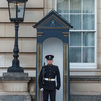 Standing guard at Buckingham Palace.