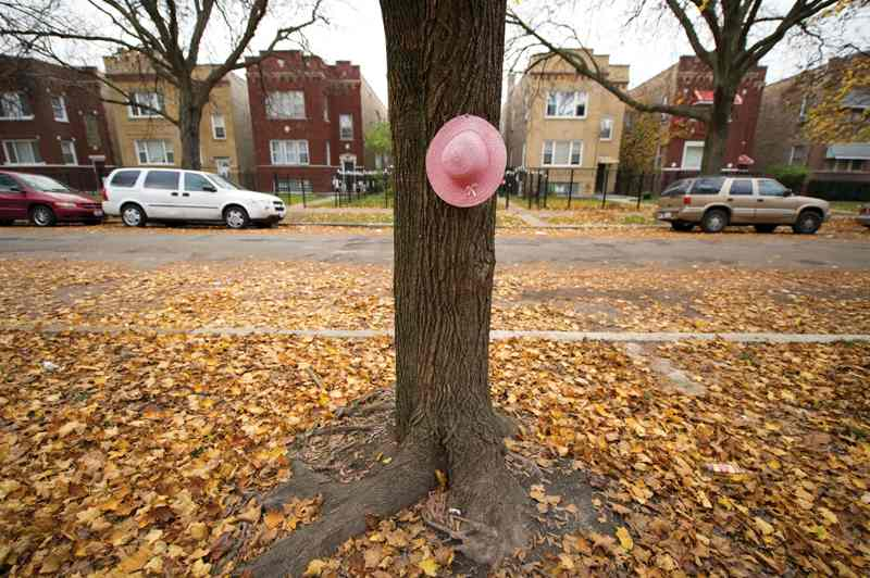 Heaven Sutton's hat (pinned to a tree in her family's yard) memorializes the 7-year-old killed as she finished selling candy — reportedly shot in a gang dispute on Chicago's West Side